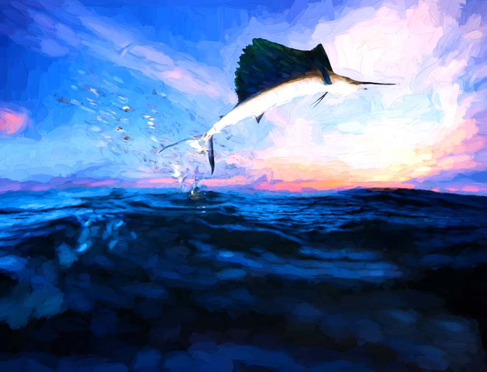 Sailfish Over the Ocean
